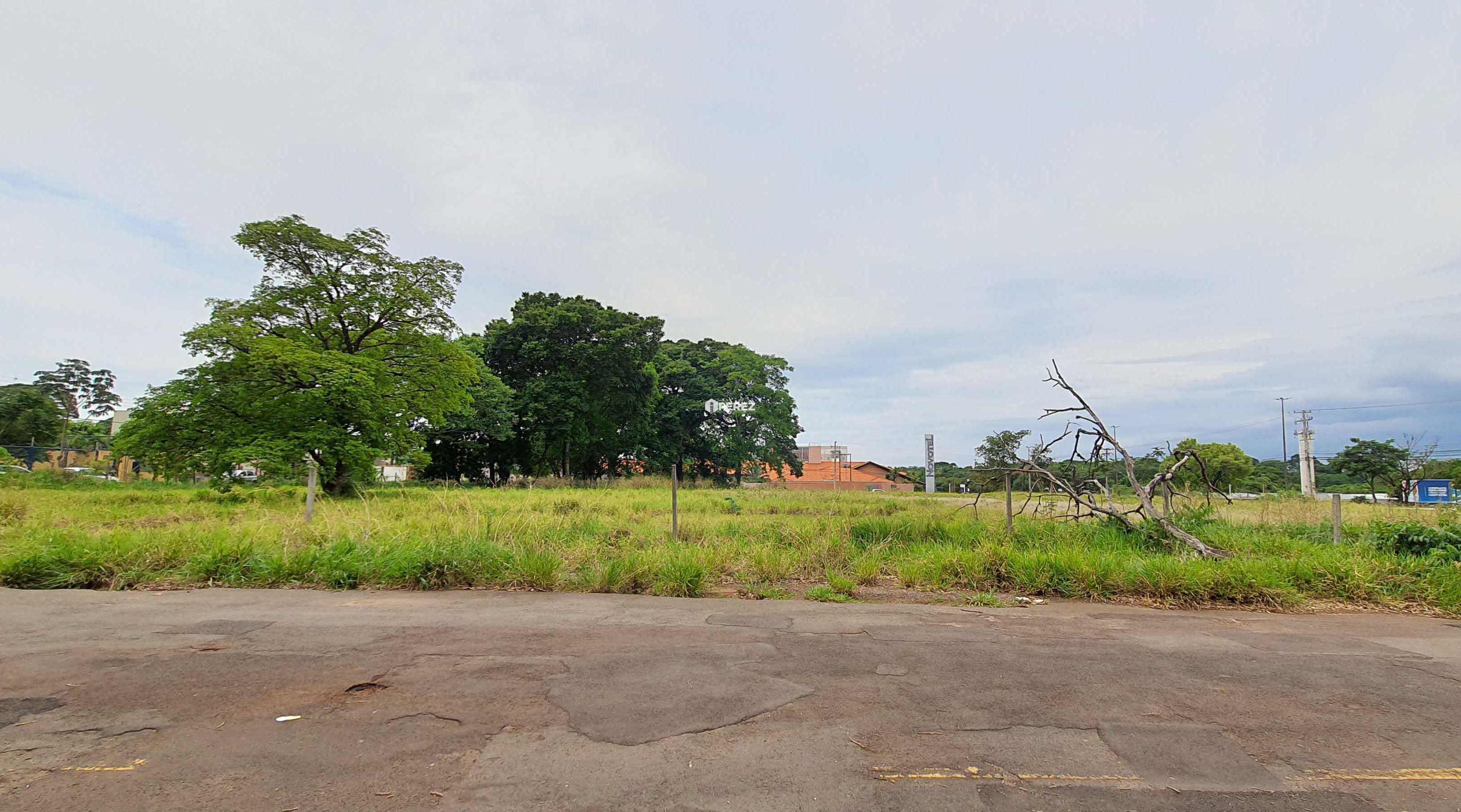 aluguel-campo-grande-ms-terreno-mato-grosso-tayama-park-perez-imoveis